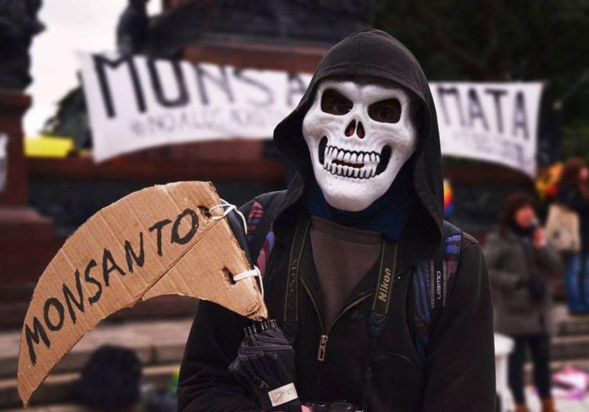 Monsanto44