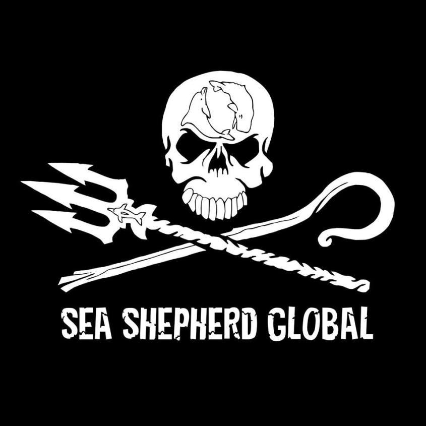 sea shepard logo_n