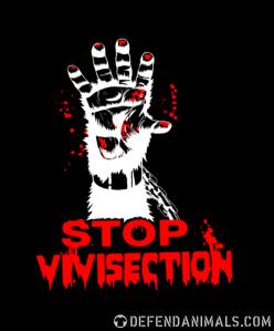 stopp vivisektionn