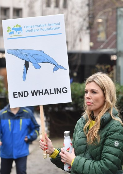 carrie symonds end whaling
