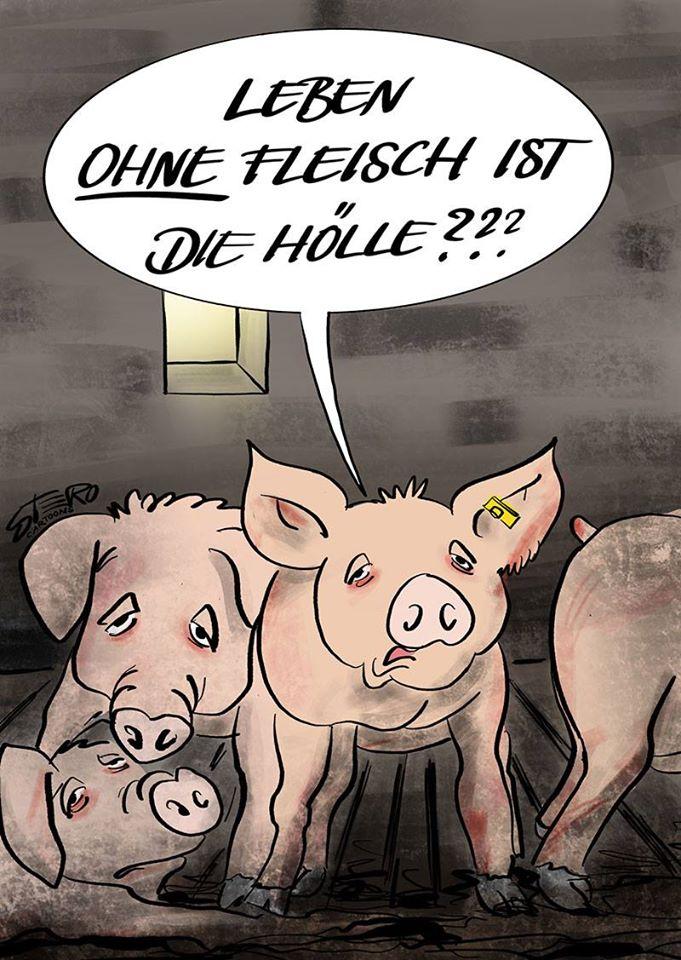 schöner slogan schweinejpg