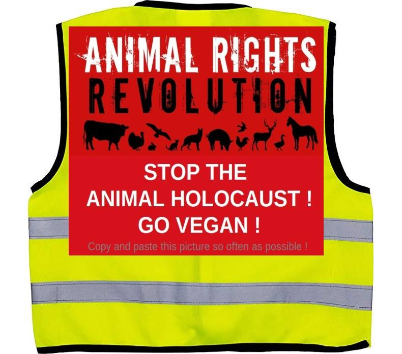stop the animal holocaustn