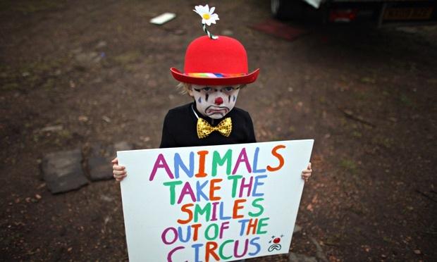 circus no smile