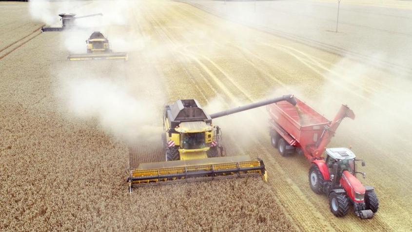 getreideernte-traktor-pg