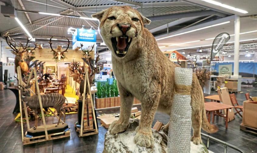 Jagdmesse jpg