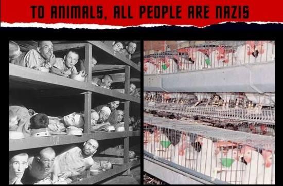 Nazi Kaserne und Tier Kaserne pg