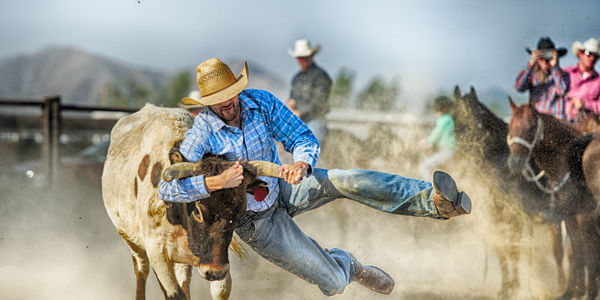 rodeos in new zealand