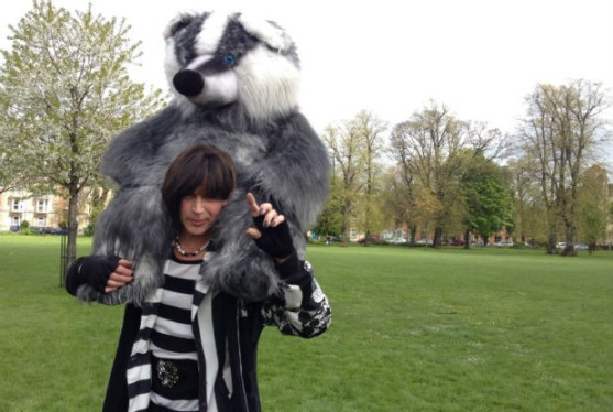badger demo chick