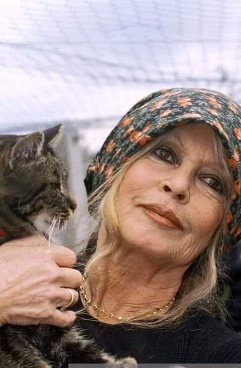 Brigitte Bardott mit Katze