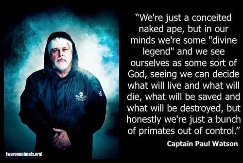Captain Watson Zitat jpg