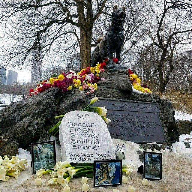 Grab für Iditarod pg
