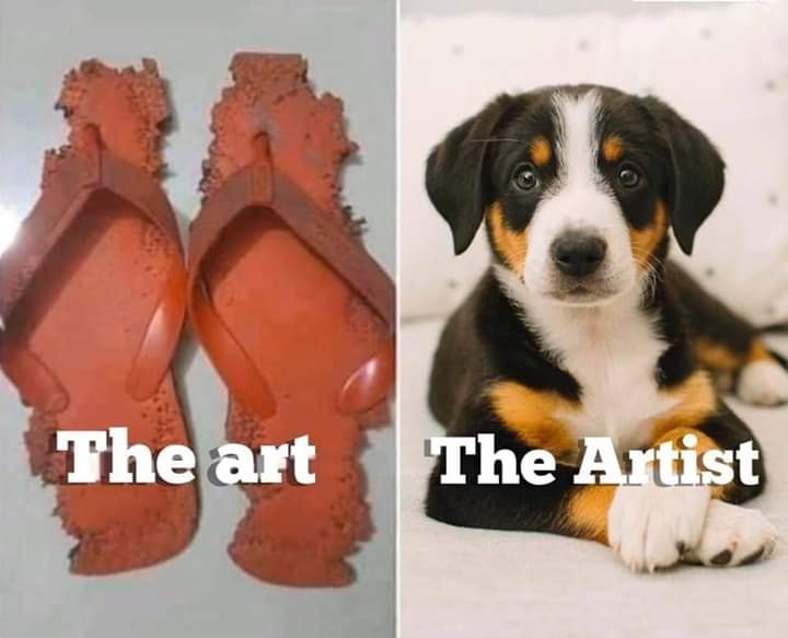 hund und kapute schuhejpg