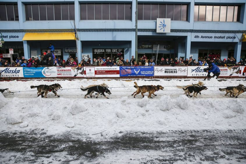 A team heads out at the ceremonial start of the Iditarod Trail Sled Dog Race to begin their near 1,000-mile (1,600-km) journey through Alaska's frigid wilderness in downtown Anchorage