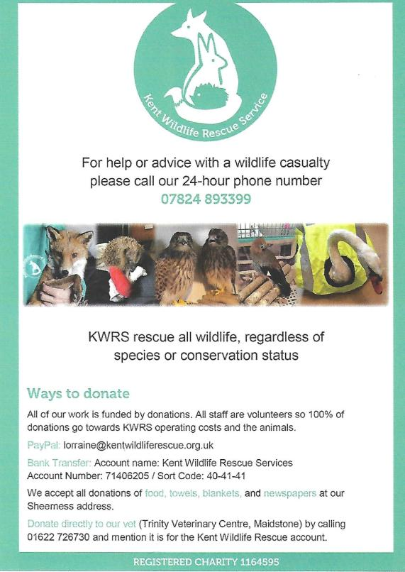 Kent Wildlife Rescue Service