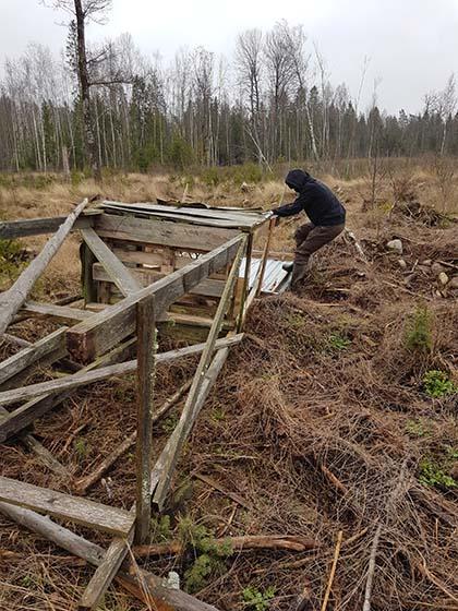 Sweden_hunting2_Mar20