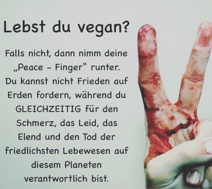peace Zeichen und Spruchjpg