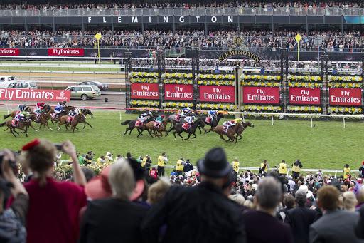 pferde rennen australienjpg