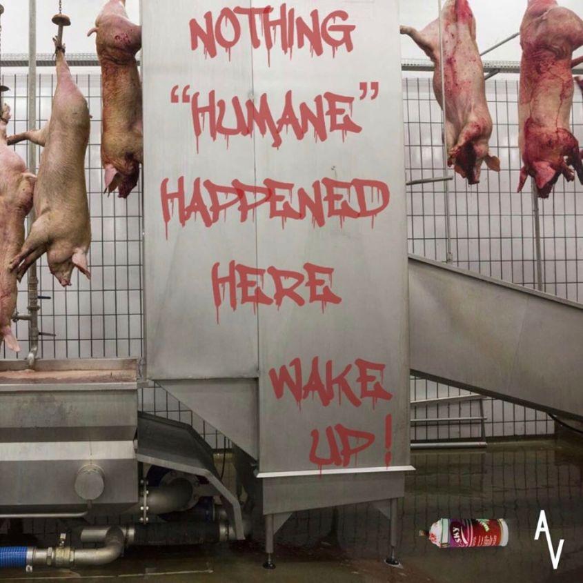 slogan über schlachthof