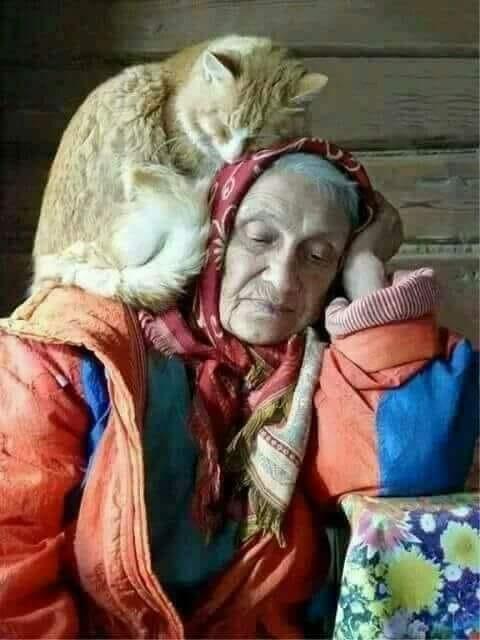 alte Frau mit Katze