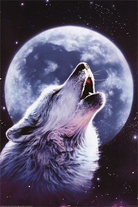 howlingwolfmoon graphic