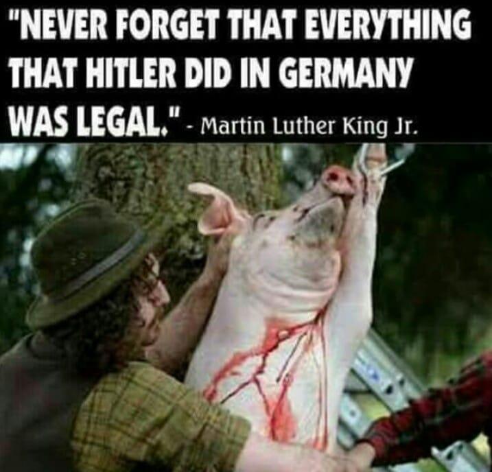 Zitat über Hitlerjpg