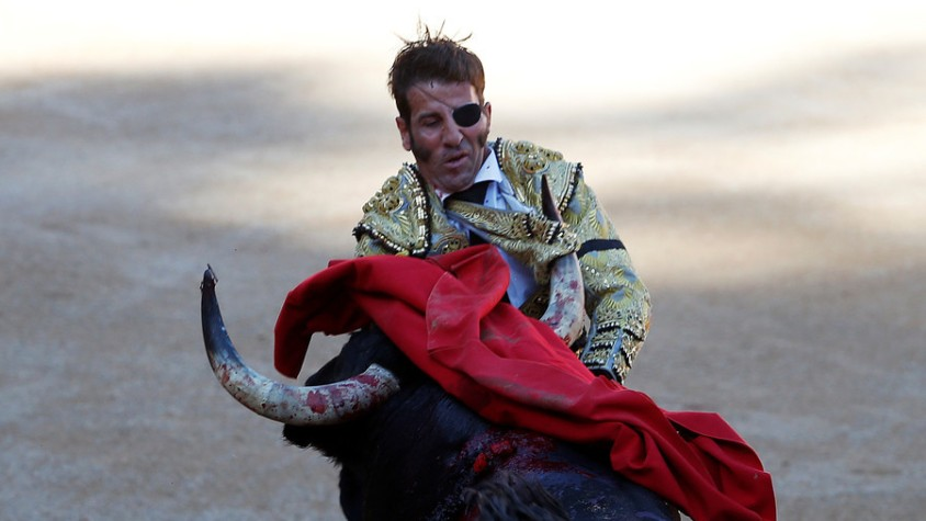 bullfight july 1