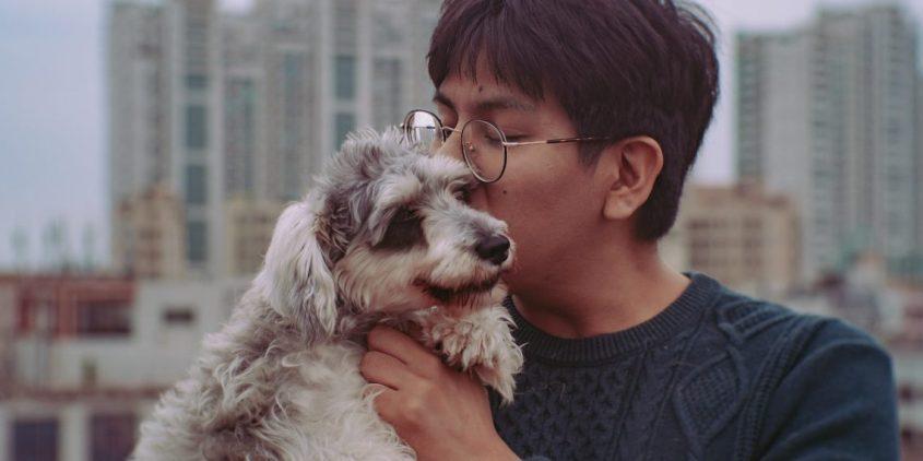 hund in China pg