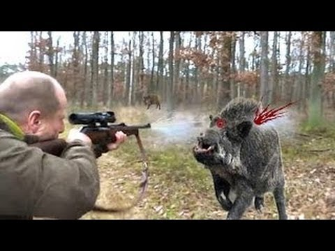 wildschweinjagdjpg