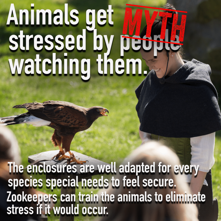 zoo-Myth 3