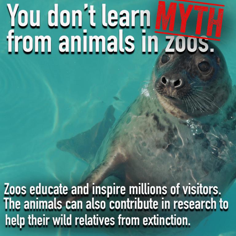Zoo Myth 5png