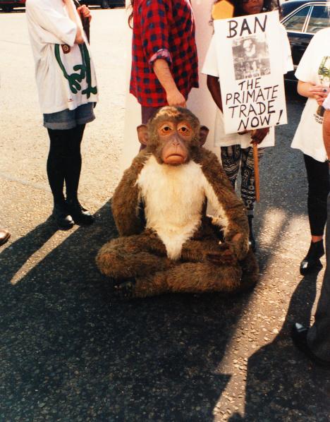 GLAD primate 1
