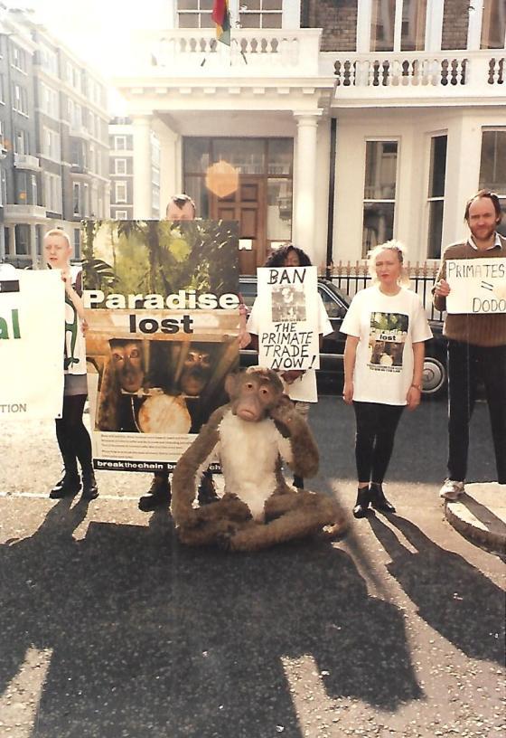 GLAD primate 4