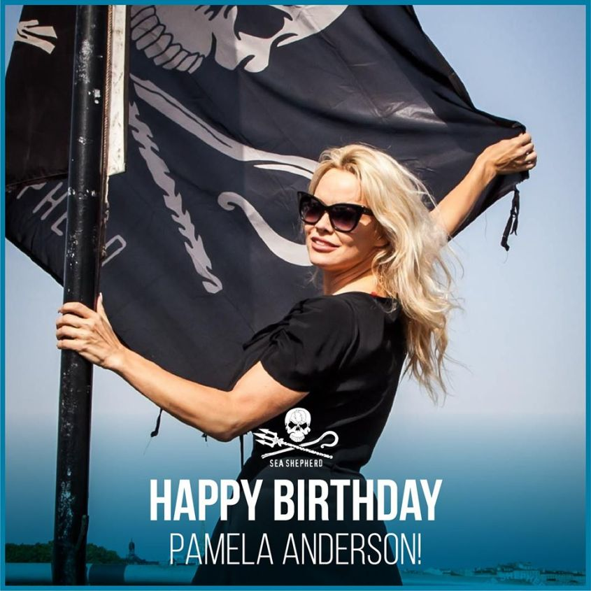 Pamela Anderson shea shepard