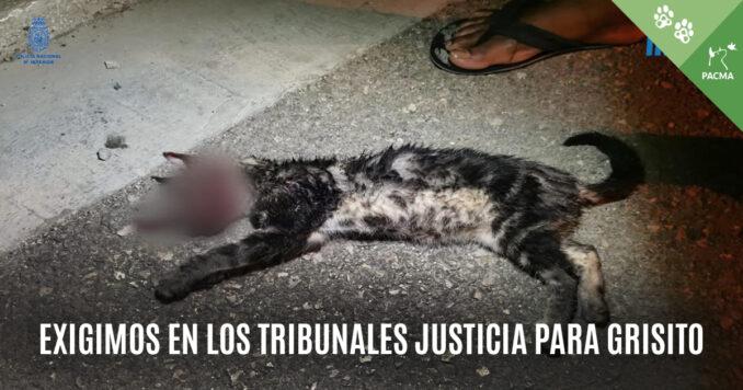 Justicia Para Grisito_