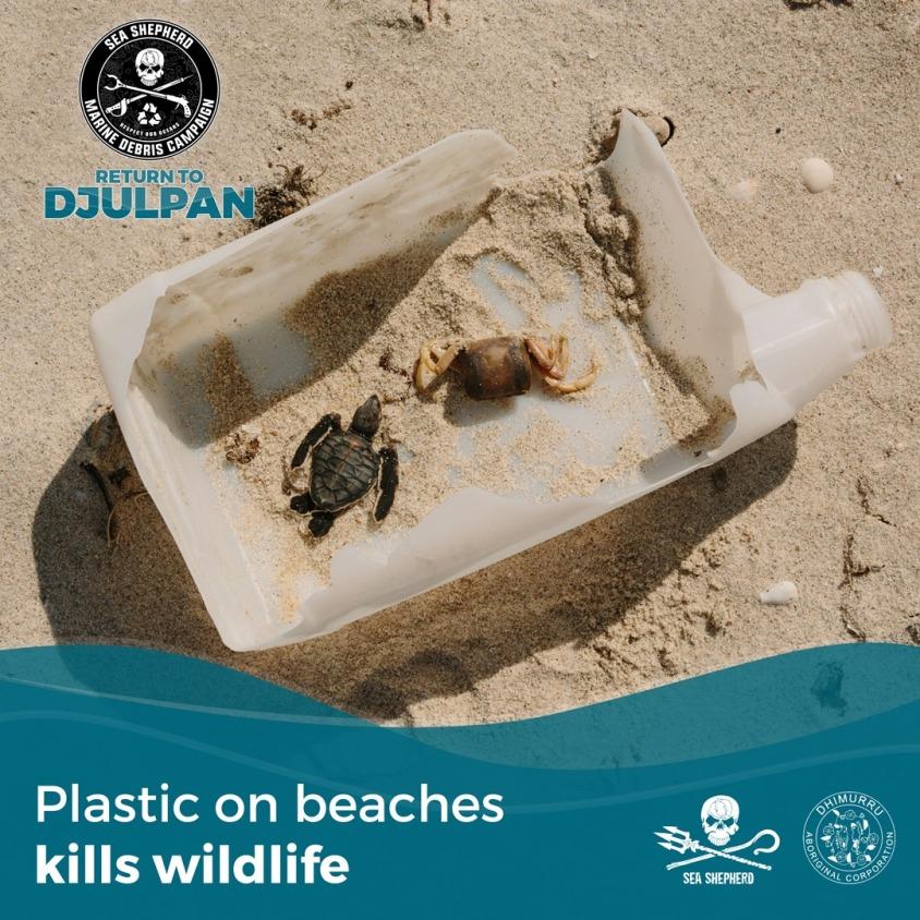 plastik kills o