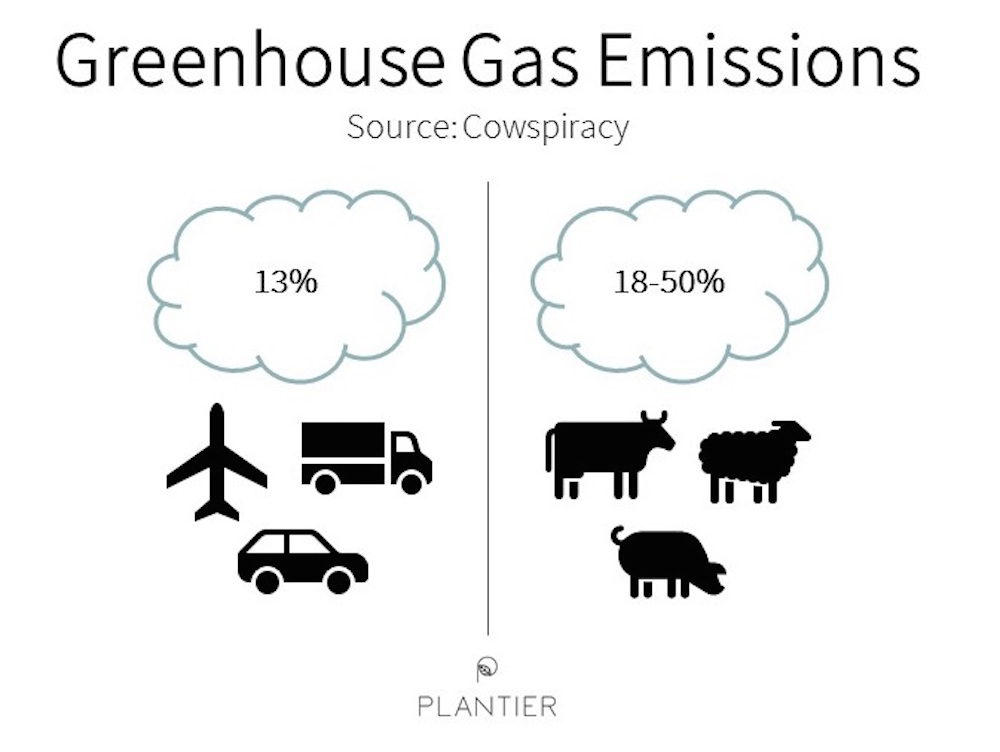 Plant-based and the Environment — Plantier